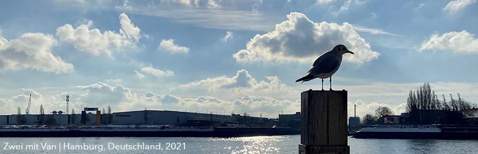 Hamburger Hafen, Januar 2021